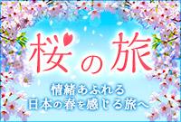 京都へ桜を見に行こう